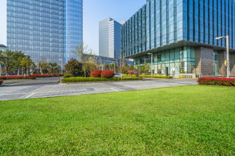 Commercial Landscape